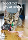 Good Cats Play At Home