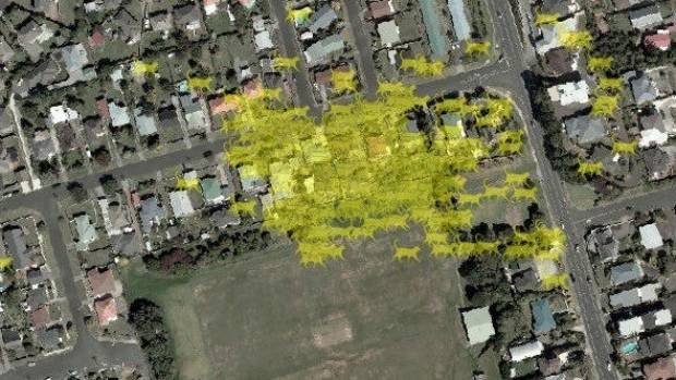 GPS reveals how far New Plymouth cats travel