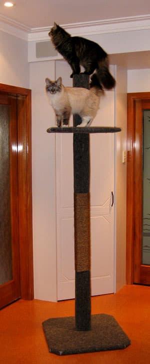 2-metre Super Scratcher Deluxe Cat Climbing Post