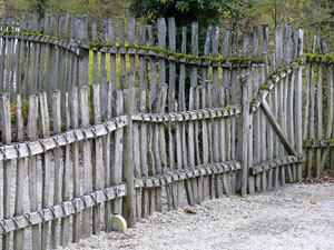 falling down fence