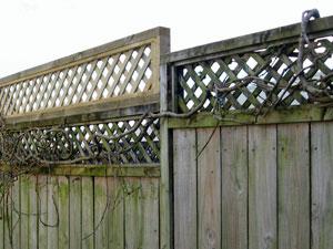 Fence with lattice