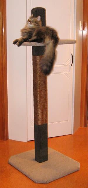 1.5-metre Compact Scratcher Cat Climbing Post